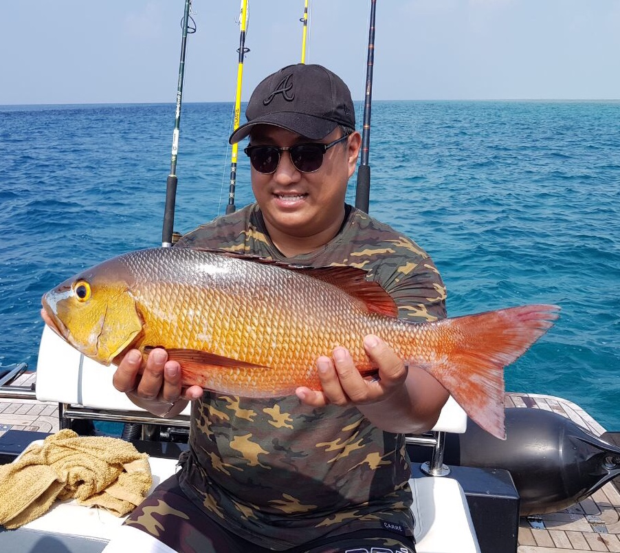 Game fishing in Maldives, Night fishing on line fishing caught a red snapper